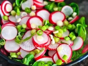 Salat-iz-svezhego-redisa
